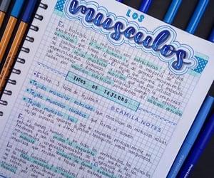 azul, crayola, and stabilo image
