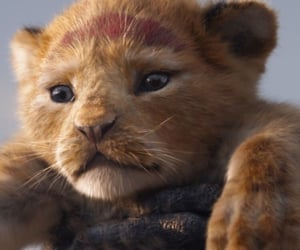 disney, the lion king, and fondo de pantalla image