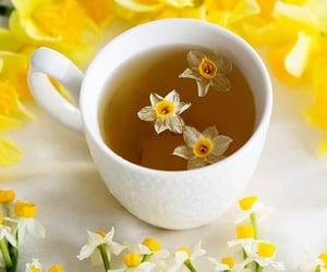 daffodils, shabby chic, and tea time image
