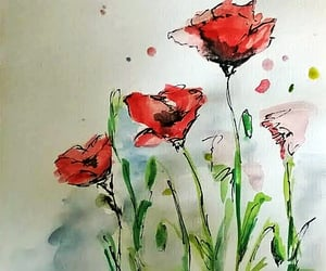 drawing, flower, and poppy image