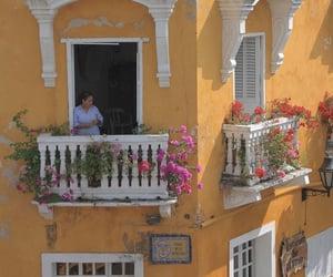 aesthetic, balcony, and flowers image