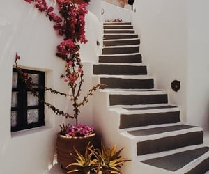 flower, Greece, and happiness image