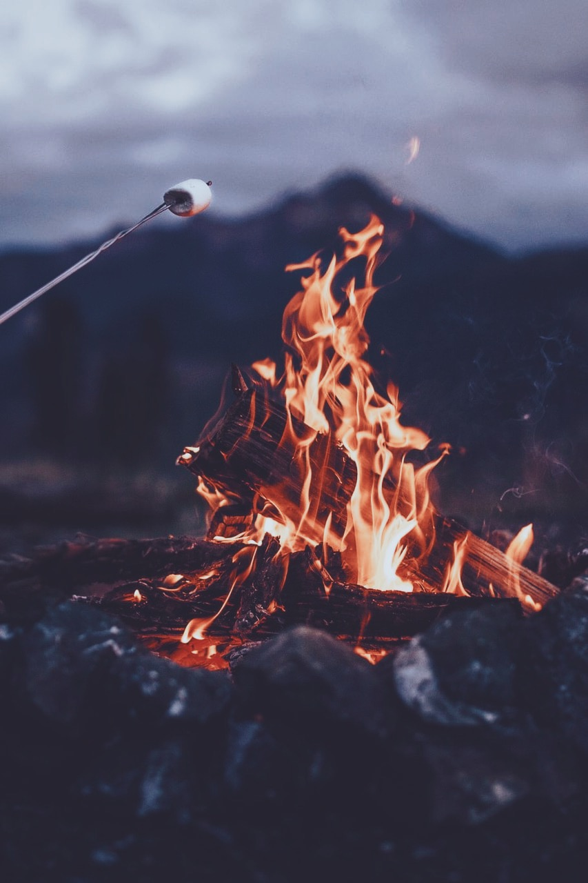 90s, artist, and campfire image