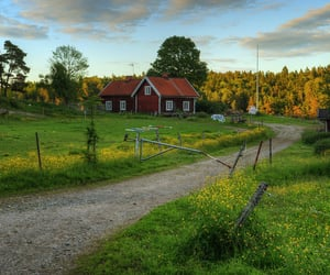 beautiful, countryside, and finland image