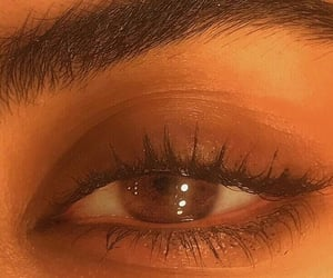 eye, brown, and eyebrows image