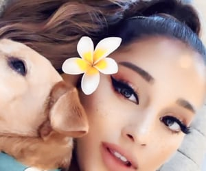 ariana grande, Toulouse, and edit image