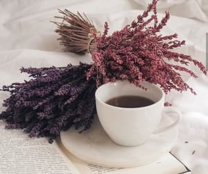 book, coffee, and coffee time image