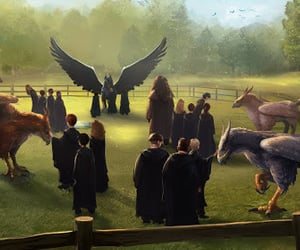 creatures, harry potter, and harry potter tumblr image