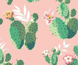 art, background, and cactus image