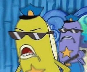 meme, spongebob, and cops image