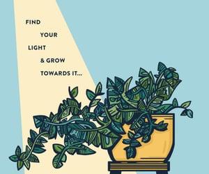 grow, happiness, and light image