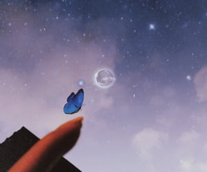 butterfly, criativity, and ideia image