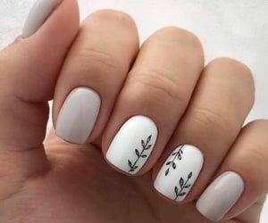 nails, acrylic, and manicure image