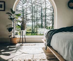 bedroom, home, and forest image