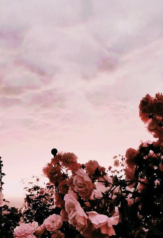 Aesthetic Sunset Uploaded By Annachairaxo On We Heart It