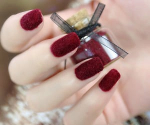 nails, wine red, and nails beauty image
