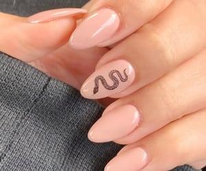 nails and snake image