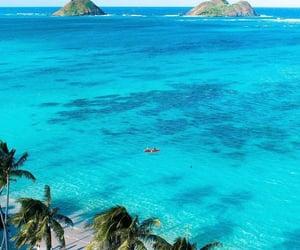 summer, beach, and beautiful image