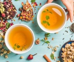 best green tea in india, best green tea, and best green tea bags image