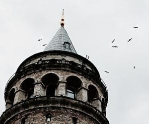 aesthetic, bird, and tower image
