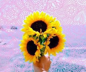 art, sunflower, and zentangle image