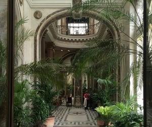 plants, aesthetic, and luxury image