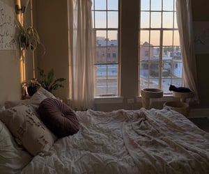 apartment, cat, and cozy image