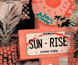 hawaii, summer, and theme image