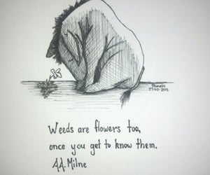 quotes, flowers, and winnie the pooh image