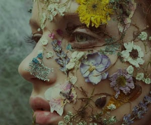 art, face, and Dead Flowers image
