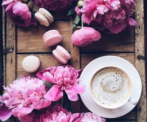 background, macaroons, and peonies image