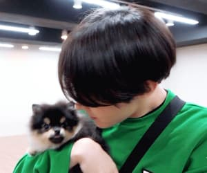 gif, bts, and kpop image