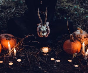 Halloween, pumpkin, and article image