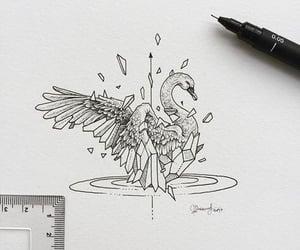 drawing, art, and Swan image