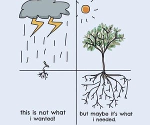 determination, growth, and hope image