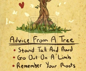tree, quotes, and advice image