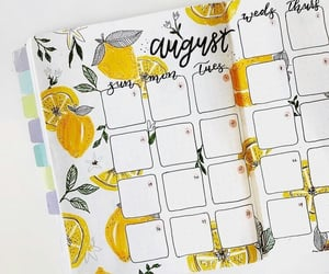 August and bullet journal image