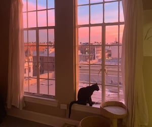 aesthetic, pink, and cat image