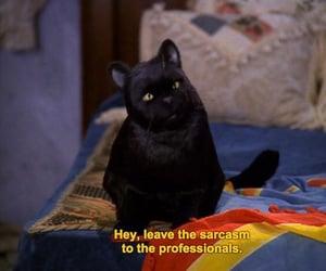 Salem invented Sarcasm