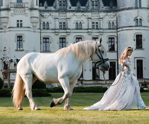 castle, fantasy, and horse image