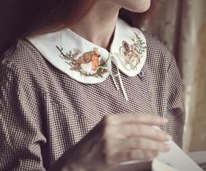 birds, countryside, and dress image
