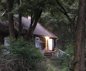 cottage, forest, and log cabin image
