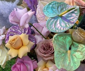 colors, floral, and flowers image