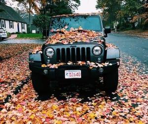 fall, autumn, and car image