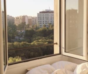 Sunny, view, and window image