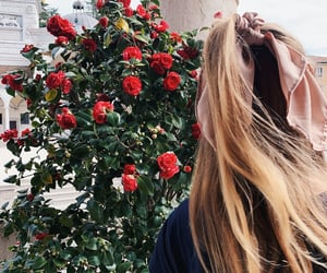 blonde, city, and flowers image