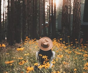 nature, flowers, and girl image