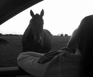 blackwhite, girl, and car image