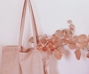 aesthetic, flowers, and peach image