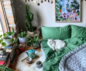 cat, home, and interior image